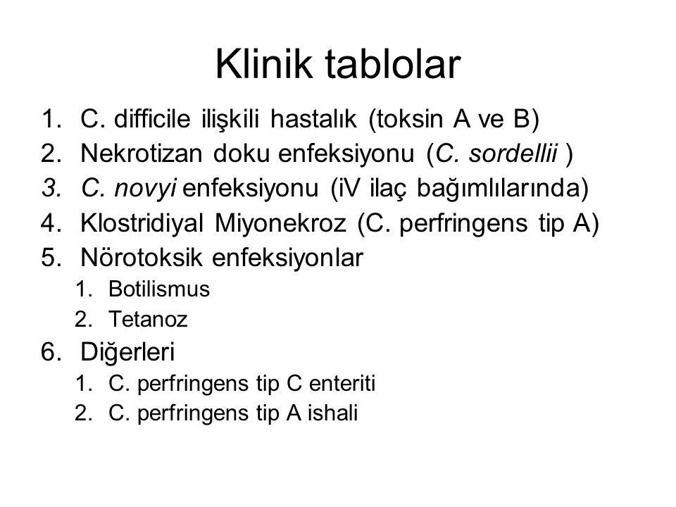 Klinik tablolar 1.C. difficile ilişkili hastalık (toksin A ve B) 2.Nekrotizan doku enfeksiyonu (C. sordellii ) 3.C. novyi enfeksiyonu (iV ilaç bağımlı