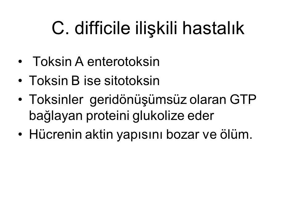 C. difficile ilişkili hastalık Toksin A enterotoksin Toksin B ise sitotoksin Toksinler geridönüşümsüz olaran GTP bağlayan proteini glukolize eder Hücr