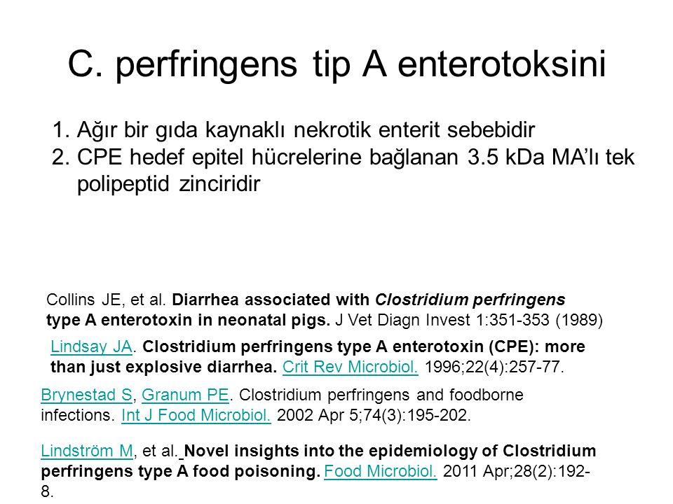 C. perfringens tip A enterotoksini Collins JE, et al. Diarrhea associated with Clostridium perfringens type A enterotoxin in neonatal pigs. J Vet Diag