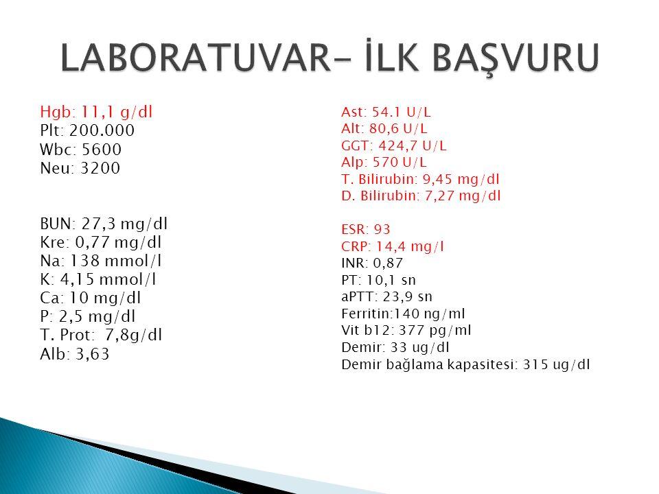 Hgb: 11,1 g/dl Plt: 200.000 Wbc: 5600 Neu: 3200 BUN: 27,3 mg/dl Kre: 0,77 mg/dl Na: 138 mmol/l K: 4,15 mmol/l Ca: 10 mg/dl P: 2,5 mg/dl T. Prot: 7,8g/