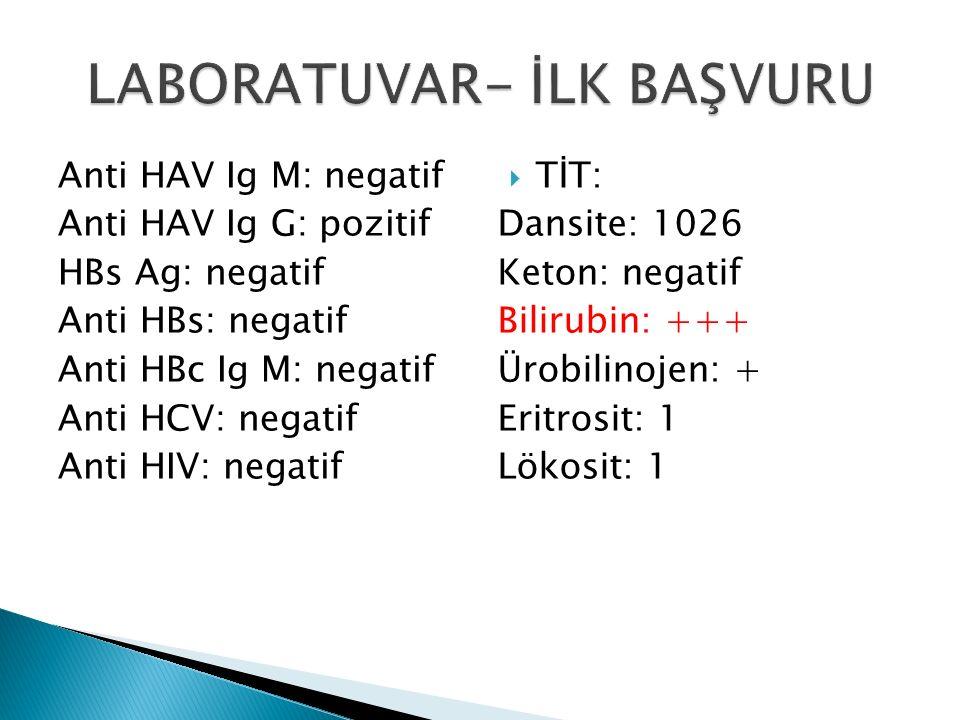 Anti HAV Ig M: negatif Anti HAV Ig G: pozitif HBs Ag: negatif Anti HBs: negatif Anti HBc Ig M: negatif Anti HCV: negatif Anti HIV: negatif  TİT: Dansite: 1026 Keton: negatif Bilirubin: +++ Ürobilinojen: + Eritrosit: 1 Lökosit: 1