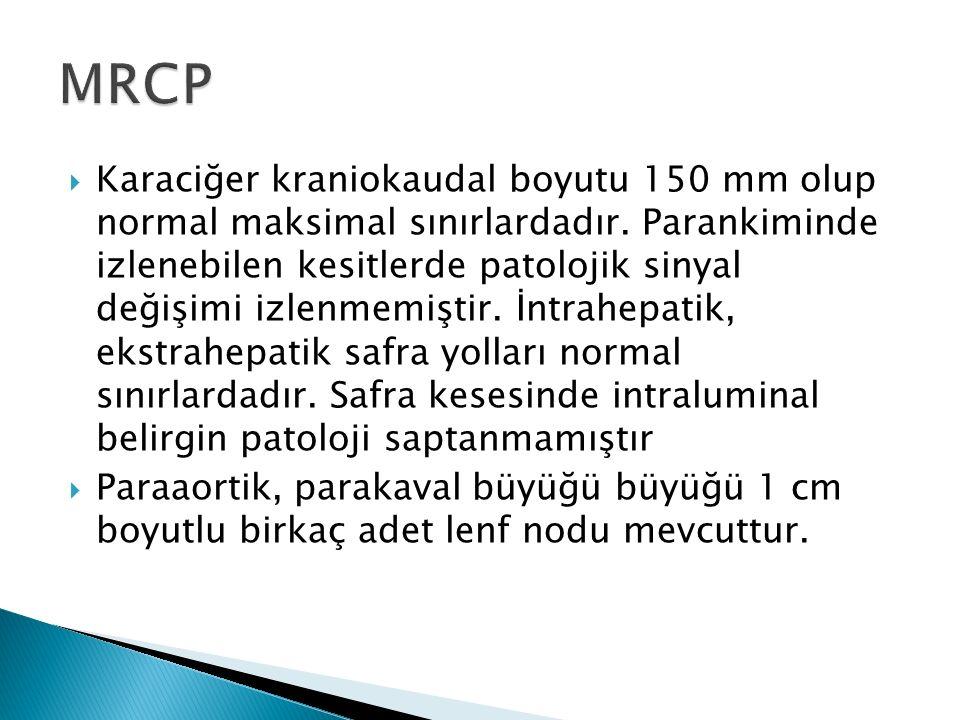  Karaciğer kraniokaudal boyutu 150 mm olup normal maksimal sınırlardadır. Parankiminde izlenebilen kesitlerde patolojik sinyal değişimi izlenmemiştir