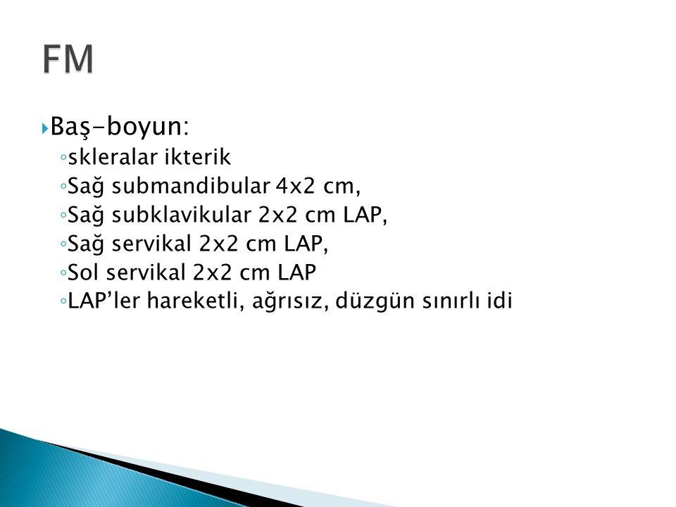  Baş-boyun: ◦ skleralar ikterik ◦ Sağ submandibular 4x2 cm, ◦ Sağ subklavikular 2x2 cm LAP, ◦ Sağ servikal 2x2 cm LAP, ◦ Sol servikal 2x2 cm LAP ◦ LAP'ler hareketli, ağrısız, düzgün sınırlı idi