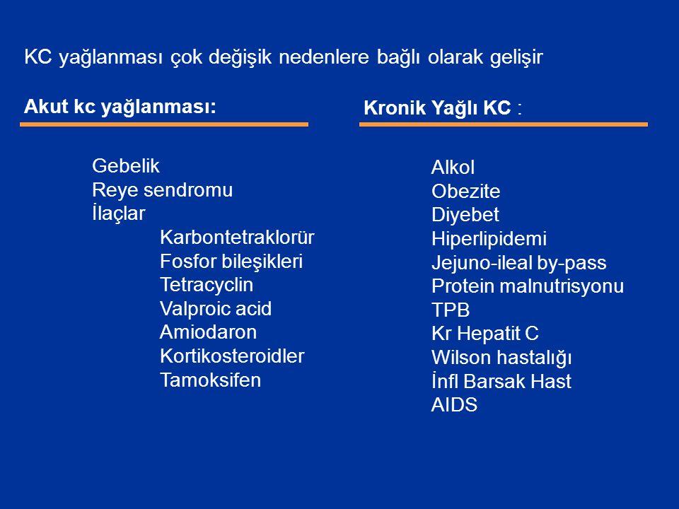 KC yağlanması çok değişik nedenlere bağlı olarak gelişir Akut kc yağlanması: Gebelik Reye sendromu İlaçlar Karbontetraklorür Fosfor bileşikleri Tetracyclin Valproic acid Amiodaron Kortikosteroidler Tamoksifen Kronik Yağlı KC : Alkol Obezite Diyebet Hiperlipidemi Jejuno-ileal by-pass Protein malnutrisyonu TPB Kr Hepatit C Wilson hastalığı İnfl Barsak Hast AIDS