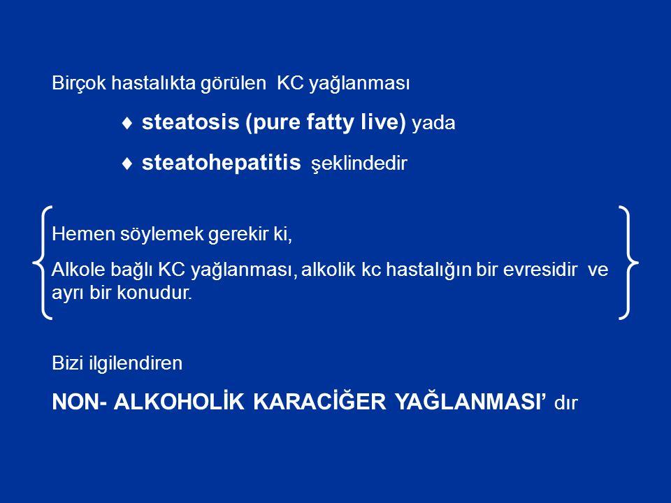 Birçok hastalıkta görülen KC yağlanması  steatosis (pure fatty live) yada  steatohepatitis şeklindedir Hemen söylemek gerekir ki, Alkole bağlı KC yağlanması, alkolik kc hastalığın bir evresidir ve ayrı bir konudur.