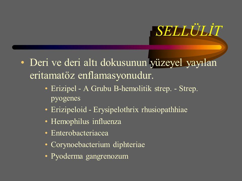 SELLÜLİT Deri ve deri altı dokusunun yüzeyel yayılan eritamatöz enflamasyonudur.
