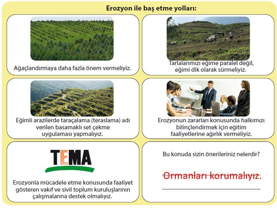Ormanları korumalıyız.