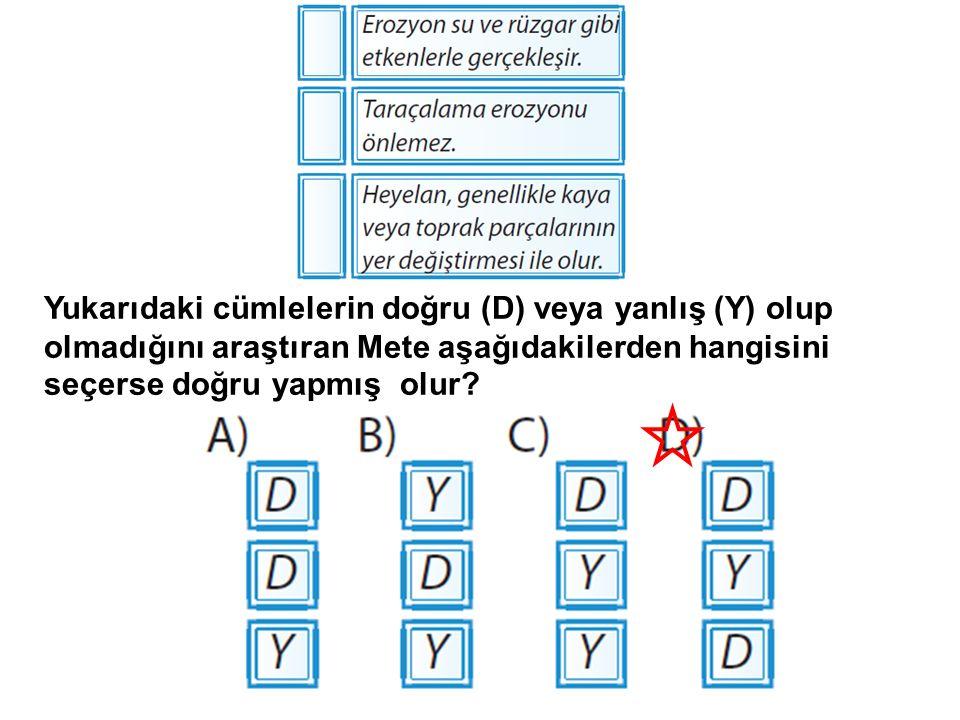 Yukarıdaki cümlelerin doğru (D) veya yanlış (Y) olup olmadığını araştıran Mete aşağıdakilerden hangisini seçerse doğru yapmış olur?