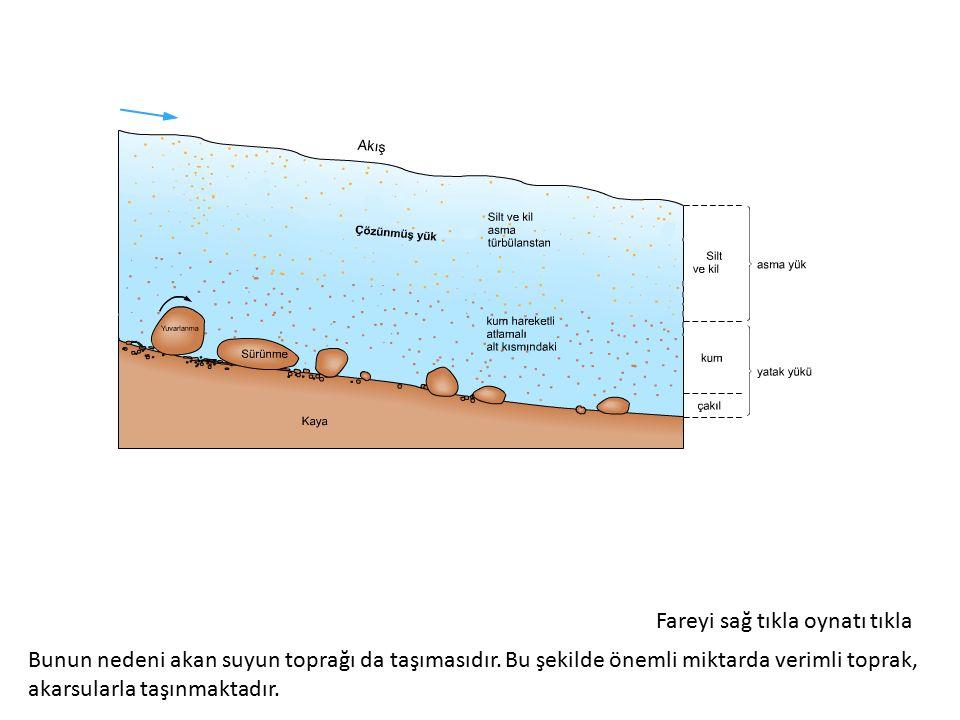 Doğal Hayatı Koruma Derneği (DHKD) erozyon ve doğal koruma alanında çalışmalar yapan uluslararası bir kuruluştur.