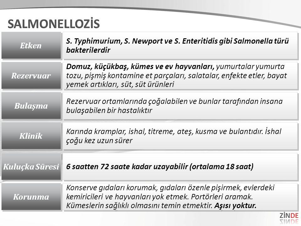 Etken S. Typhimurium, S. Newport ve S. Enteritidis gibi Salmonella türü bakterilerdir Rezervuar Domuz, küçükbaş, kümes ve ev hayvanları, yumurtalar yu