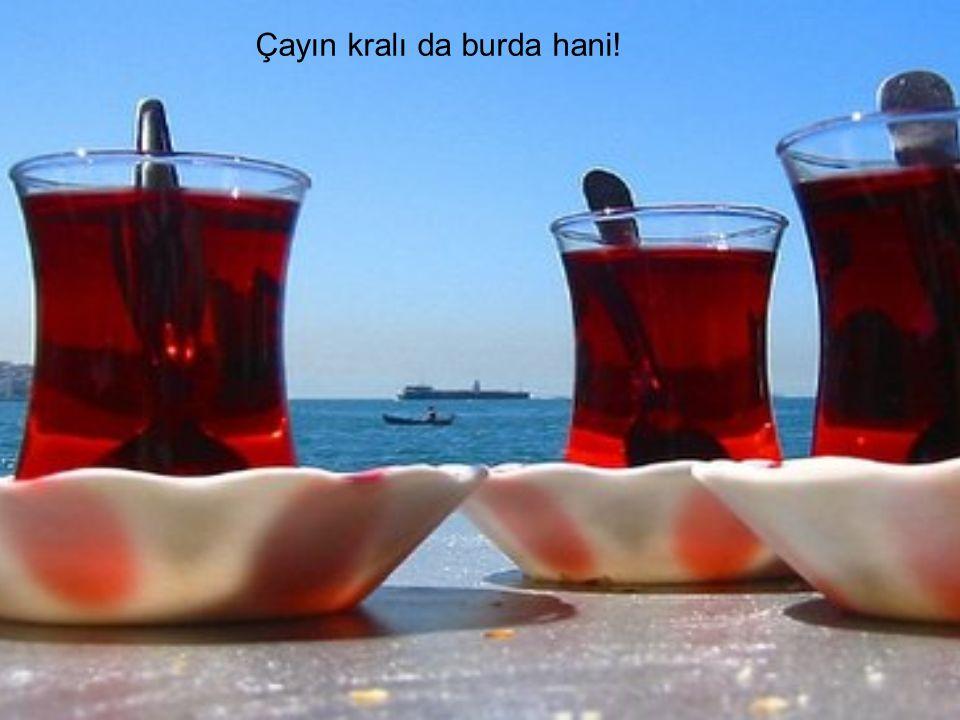 Gelelim Cumartesi Planına… Sabah erken kalkıyoruz.En geç 09:00 da Bülent'in yerinde kahvaltıya oturmuş oluyoruz.
