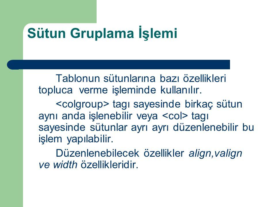 Sütun Gruplama İşlemi Tablonun sütunlarına bazı özellikleri topluca verme işleminde kullanılır. tagı sayesinde birkaç sütun aynı anda işlenebilir veya