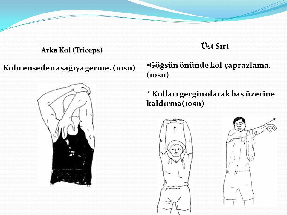 Arka Kol (Triceps) Kolu enseden aşağıya germe.(10sn) Üst Sırt Göğsün önünde kol çaprazlama.