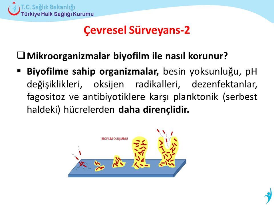 Türkiye Halk Sağlığı Kurumu T.C. Sağlık Bakanlığı Çevresel Sürveyans-2  Mikroorganizmalar biyofilm ile nasıl korunur?  Biyofilme sahip organizmalar,