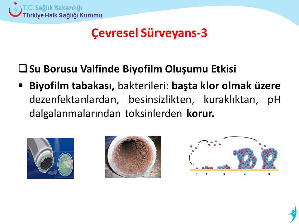 Türkiye Halk Sağlığı Kurumu T.C. Sağlık Bakanlığı Çevresel Sürveyans-3  Su Borusu Valfinde Biyofilm Oluşumu Etkisi  Biyofilm tabakası, bakterileri: