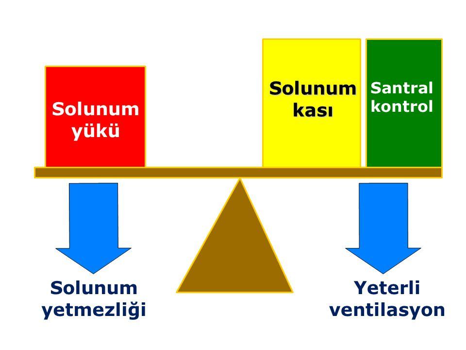 Solunum yükü Solunum kası Santral kontrol Yeterli ventilasyon Solunum yetmezliği