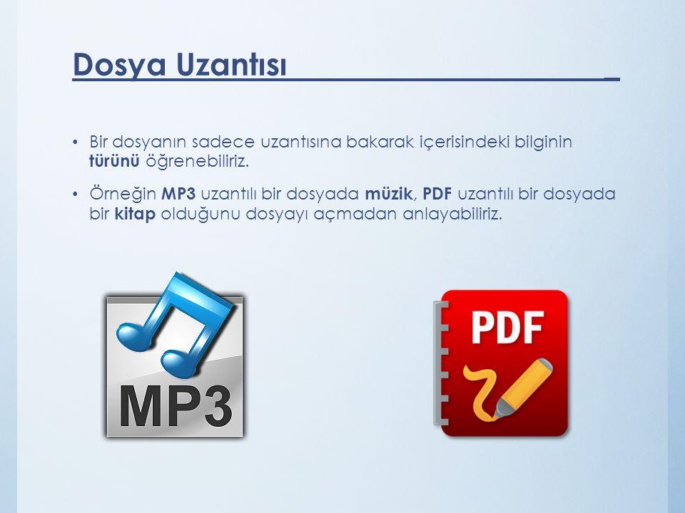 Bir dosyanın sadece uzantısına bakarak içerisindeki bilginin türünü öğrenebiliriz. Örneğin MP3 uzantılı bir dosyada müzik, PDF uzantılı bir dosyada bi