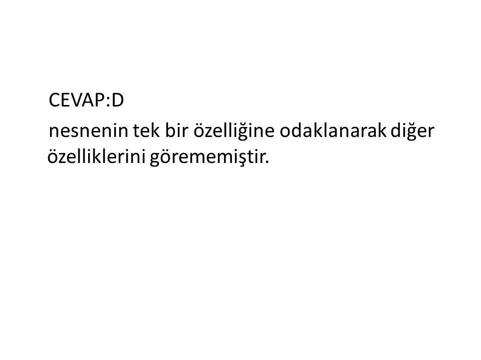 CEVAP:D nesnenin tek bir özelliğine odaklanarak diğer özelliklerini görememiştir.