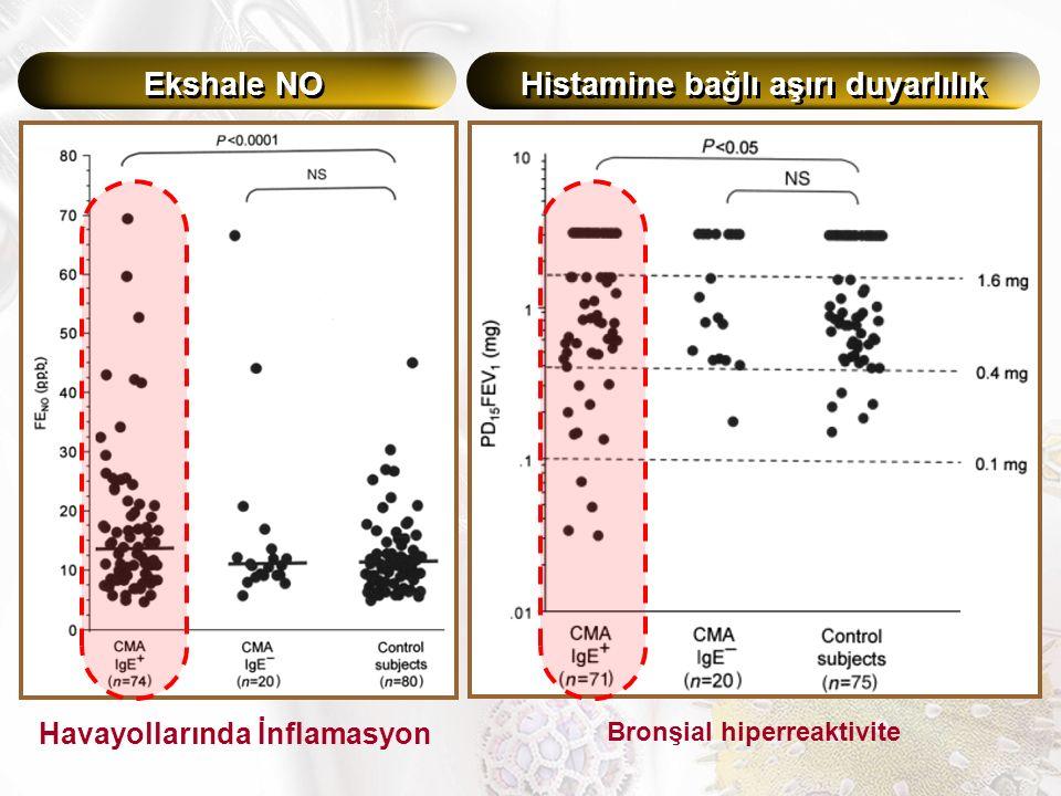 Ekshale NO Histamine bağlı aşırı duyarlılık Bronşial hiperreaktivite Havayollarında İnflamasyon