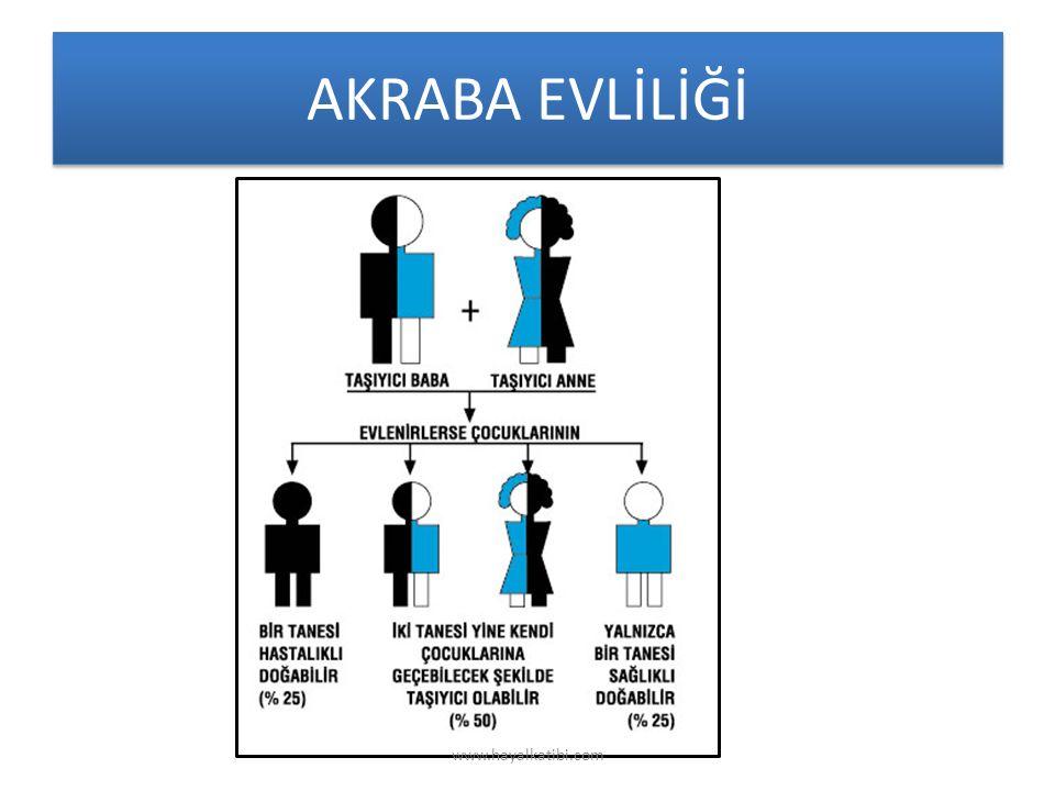 AKRABA EVLİLİĞİ www.hayalkatibi.com