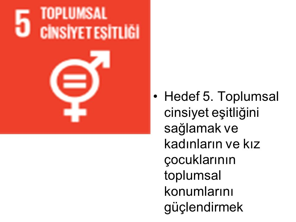 Hedef 5. Toplumsal cinsiyet eşitliğini sağlamak ve kadınların ve kız çocuklarının toplumsal konumlarını güçlendirmek