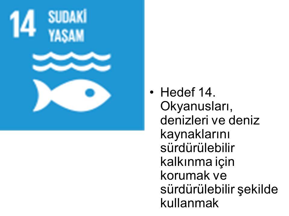 Hedef 14. Okyanusları, denizleri ve deniz kaynaklarını sürdürülebilir kalkınma için korumak ve sürdürülebilir şekilde kullanmak