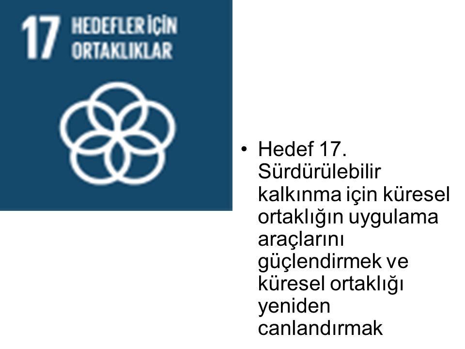 Hedef 17. Sürdürülebilir kalkınma için küresel ortaklığın uygulama araçlarını güçlendirmek ve küresel ortaklığı yeniden canlandırmak