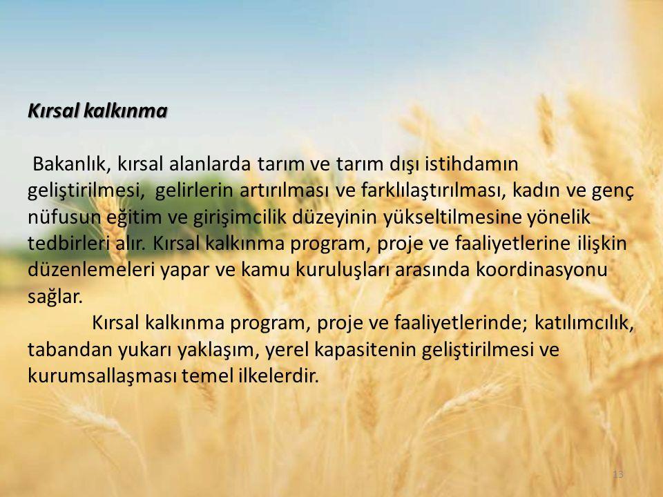 Kırsal kalkınma Bakanlık, kırsal alanlarda tarım ve tarım dışı istihdamın geliştirilmesi, gelirlerin artırılması ve farklılaştırılması, kadın ve genç nüfusun eğitim ve girişimcilik düzeyinin yükseltilmesine yönelik tedbirleri alır.