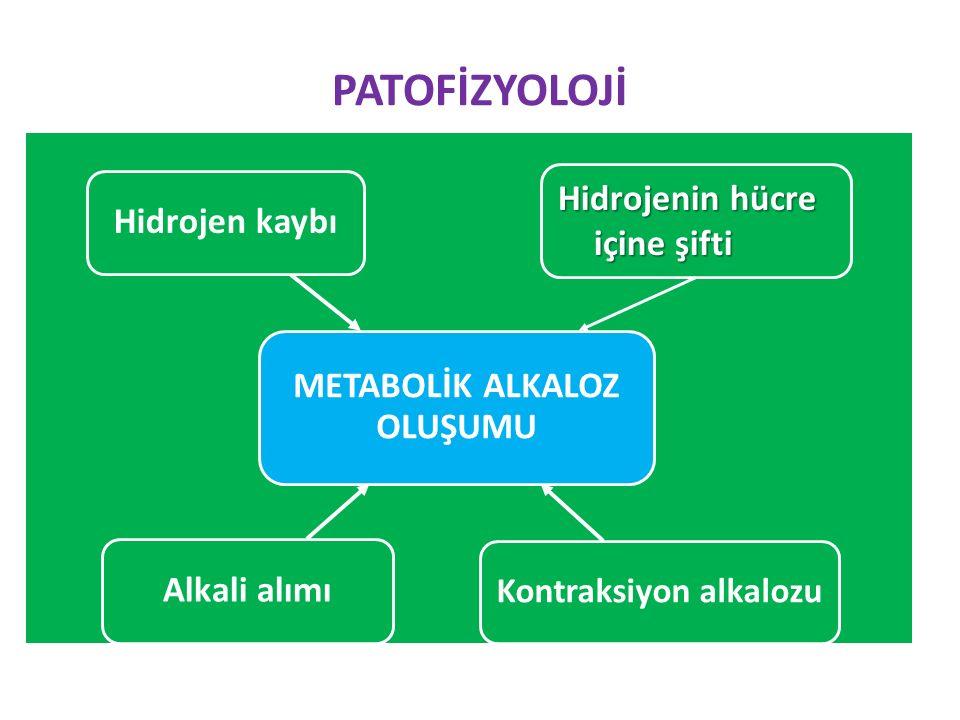 PATOFİZYOLOJİ METABOLİK ALKALOZ OLUŞUMU Hidrojen kaybı Kontraksiyon alkalozu Alkali alımı Hidrojenin hücre içine şifti