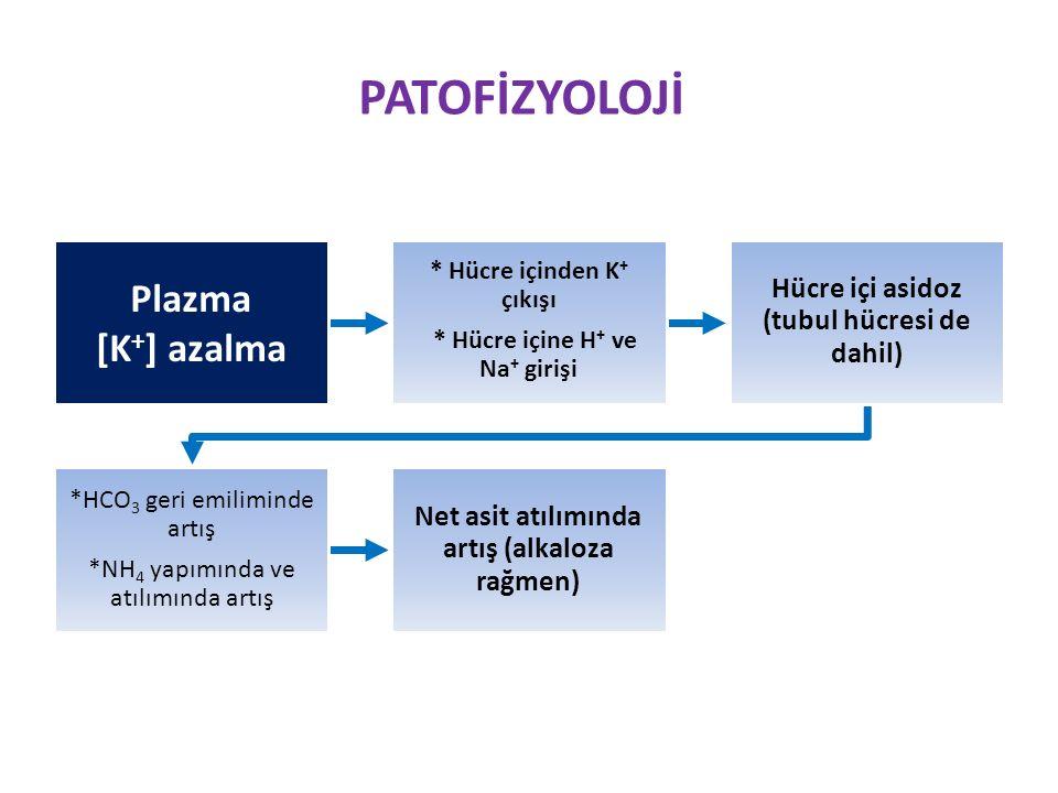 PATOFİZYOLOJİ Plazma [K + ] azalma * Hücre içinden K + çıkışı * Hücre içine H + ve Na + girişi Hücre içi asidoz (tubul hücresi de dahil) *HCO3 geri emiliminde artış *NH 4 yapımında ve atılımında artış Net asit atılımında artış (alkaloza rağmen)