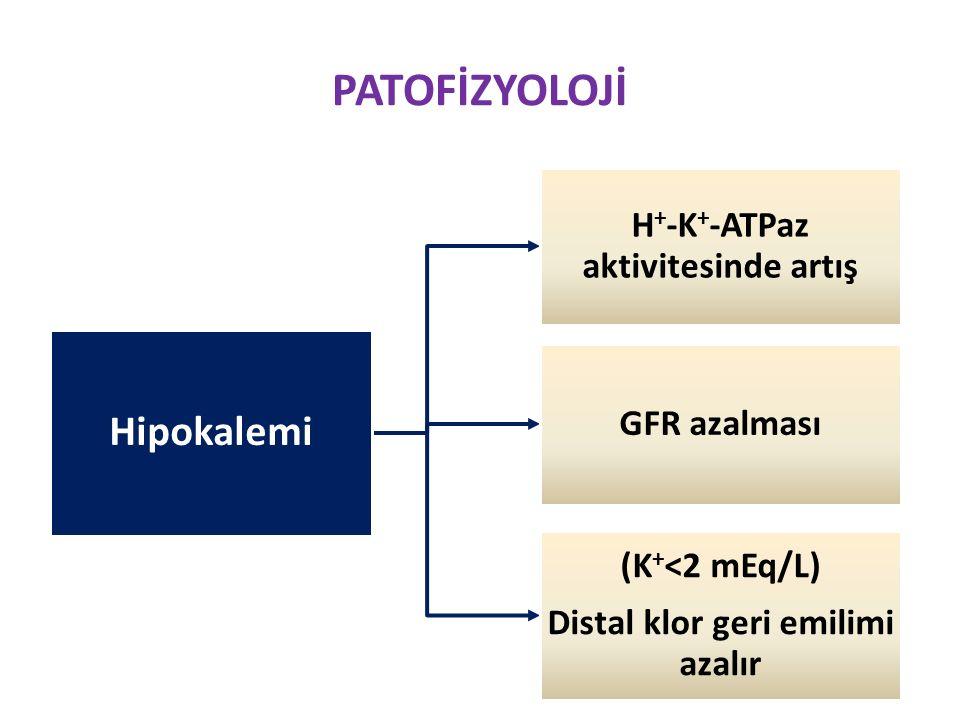 PATOFİZYOLOJİ Hipokalemi H + -K + -ATPaz aktivitesinde artış GFR azalması (K + <2 mEq/L) Distal klor geri emilimi azalır