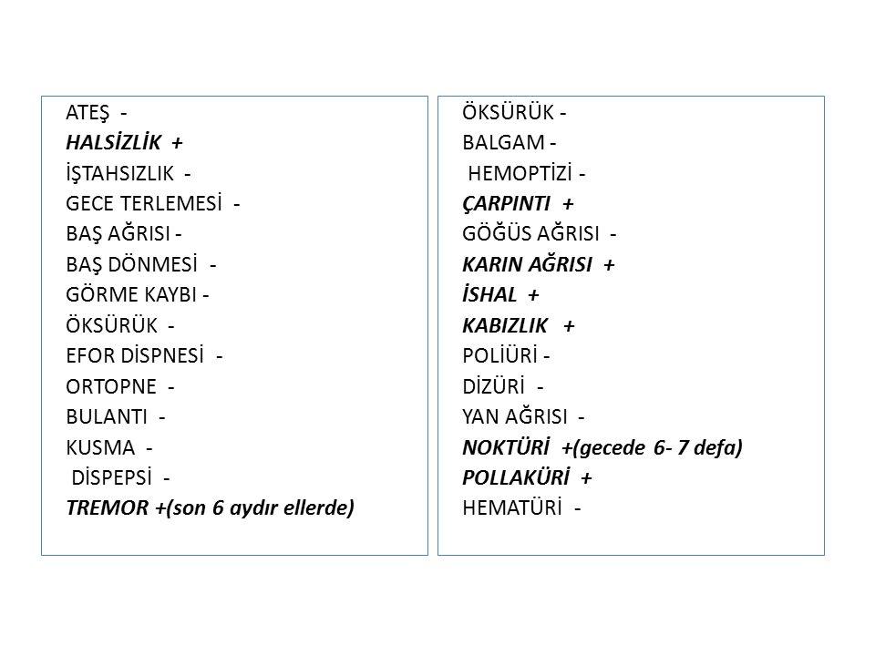 ATEŞ - HALSİZLİK + İŞTAHSIZLIK - GECE TERLEMESİ - BAŞ AĞRISI - BAŞ DÖNMESİ - GÖRME KAYBI - ÖKSÜRÜK - EFOR DİSPNESİ - ORTOPNE - BULANTI - KUSMA - DİSPEPSİ - TREMOR +(son 6 aydır ellerde) ÖKSÜRÜK - BALGAM - HEMOPTİZİ - ÇARPINTI + GÖĞÜS AĞRISI - KARIN AĞRISI + İSHAL + KABIZLIK + POLİÜRİ - DİZÜRİ - YAN AĞRISI - NOKTÜRİ +(gecede 6- 7 defa) POLLAKÜRİ + HEMATÜRİ -