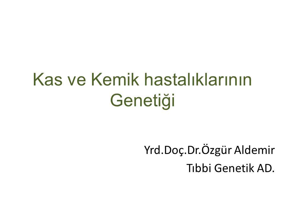 Kas ve Kemik hastalıklarının Genetiği Yrd.Doç.Dr.Özgür Aldemir Tıbbi Genetik AD.