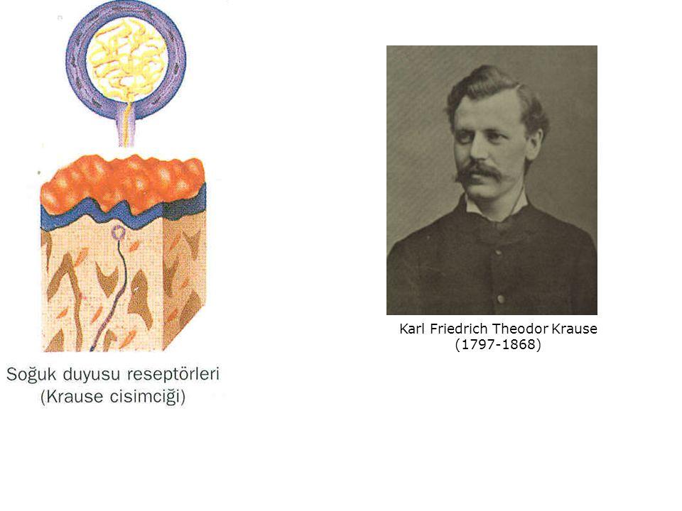 Karl Friedrich Theodor Krause (1797-1868)