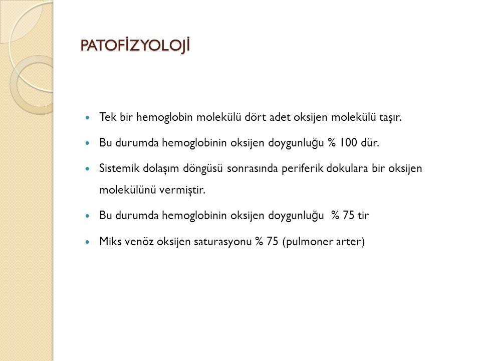 PATOF İ ZYOLOJ İ Tek bir hemoglobin molekülü dört adet oksijen molekülü taşır.