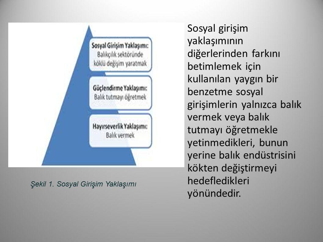 Şekil 1. Sosyal Girişim Yaklaşımı Sosyal girişim yaklaşımının diğerlerinden farkını betimlemek için kullanılan yaygın bir benzetme sosyal girişimlerin