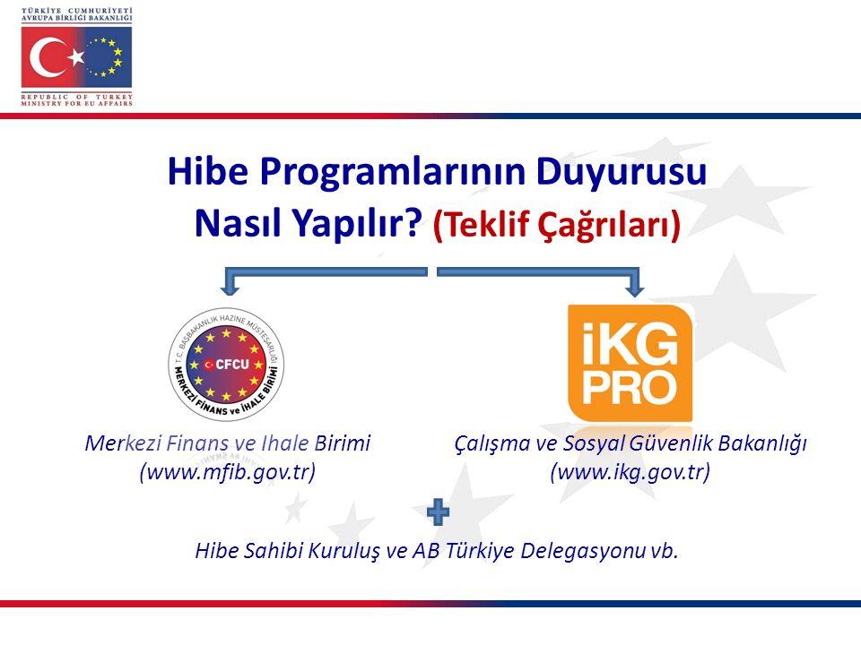 Merkezi Finans ve İhale Birimi (www.mfib.gov.tr) Çalışma ve Sosyal Güvenlik Bakanlığı (www.ikg.gov.tr) Hibe Sahibi Kuruluş ve AB Türkiye Delegasyonu vb.