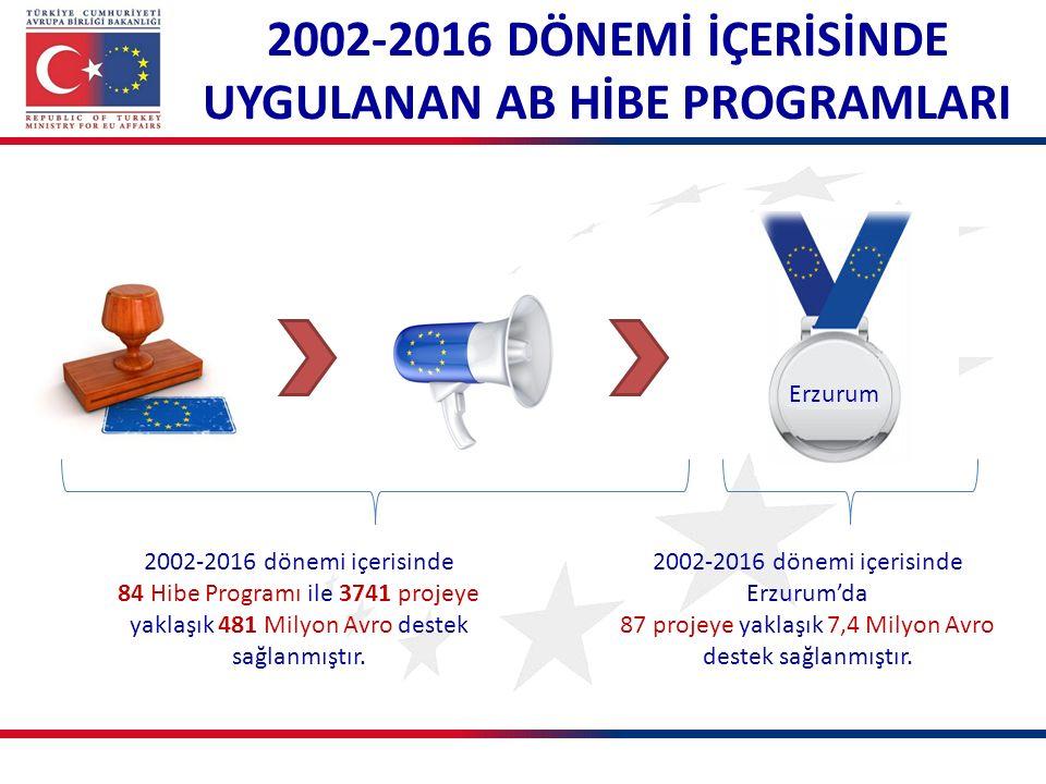 2002-2016 dönemi içerisinde 84 Hibe Programı ile 3741 projeye yaklaşık 481 Milyon Avro destek sağlanmıştır.