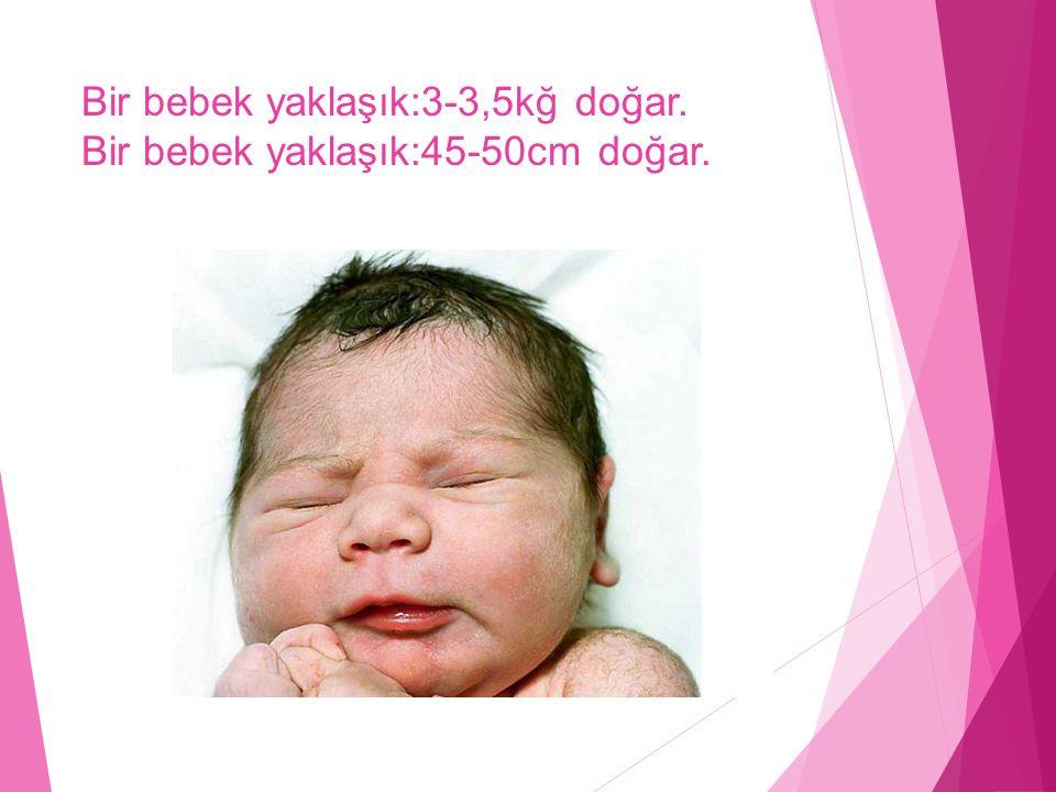 Bir bebek yaklaşık:3-3,5kğ doğar. Bir bebek yaklaşık:45-50cm doğar.
