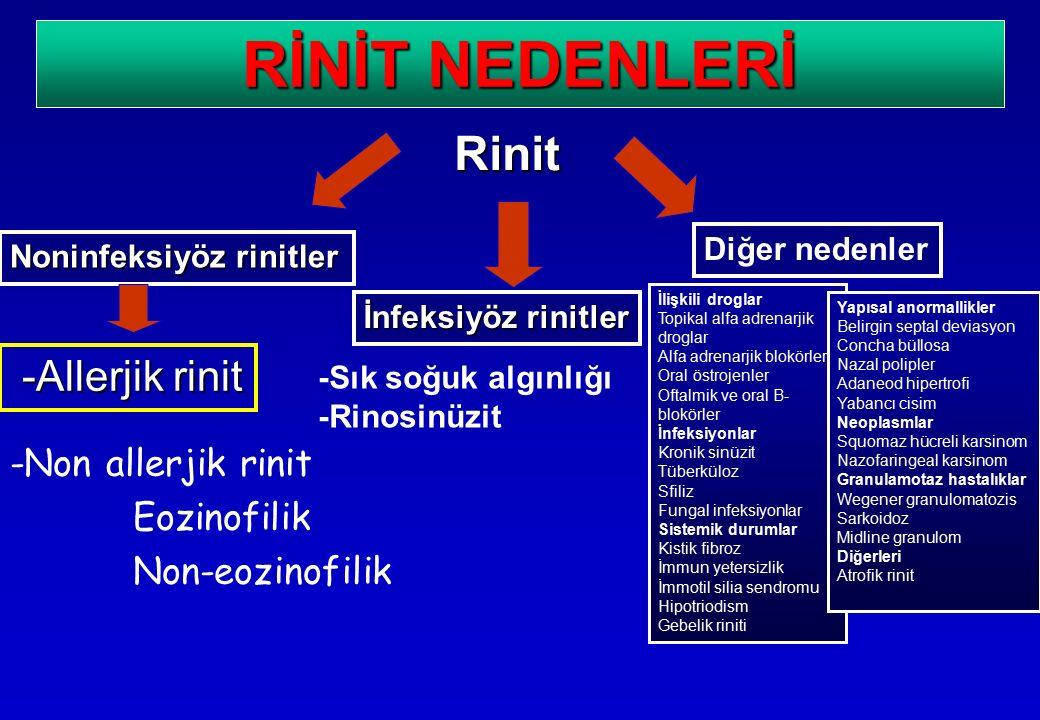 -Non allerjik rinit Eozinofilik Non-eozinofilik Rinit Noninfeksiyöz rinitler İnfeksiyöz rinitler Diğer nedenler -Allerjik rinit RİNİT NEDENLERİ İlişki