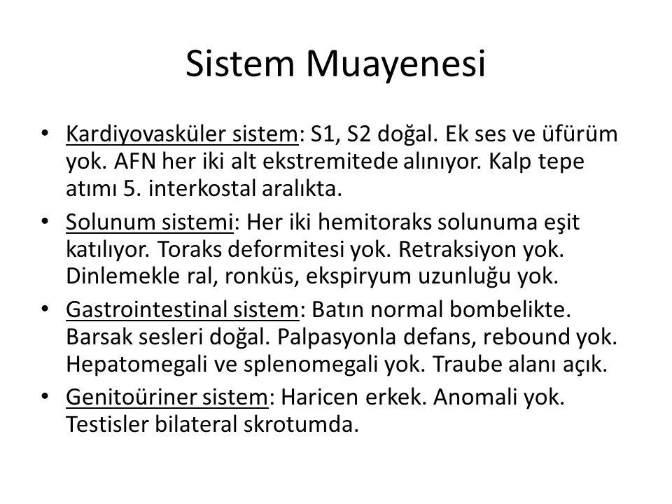 Sistem Muayenesi Kardiyovasküler sistem: S1, S2 doğal.