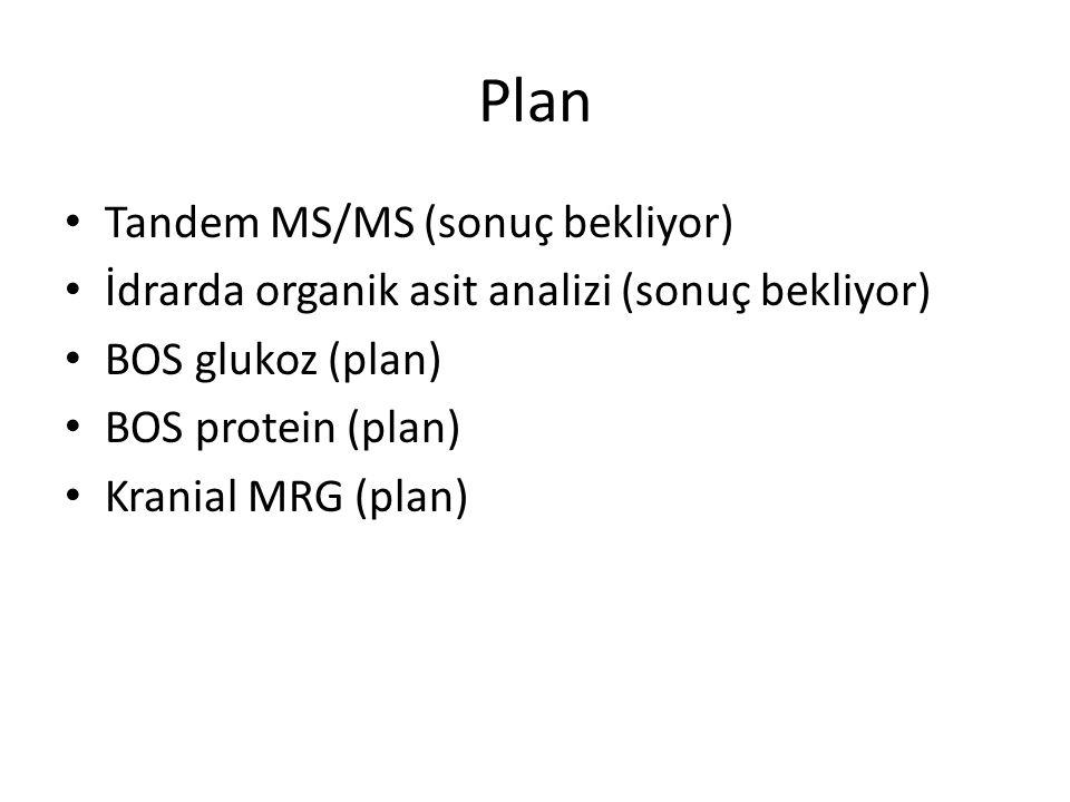 Plan Tandem MS/MS (sonuç bekliyor) İdrarda organik asit analizi (sonuç bekliyor) BOS glukoz (plan) BOS protein (plan) Kranial MRG (plan)
