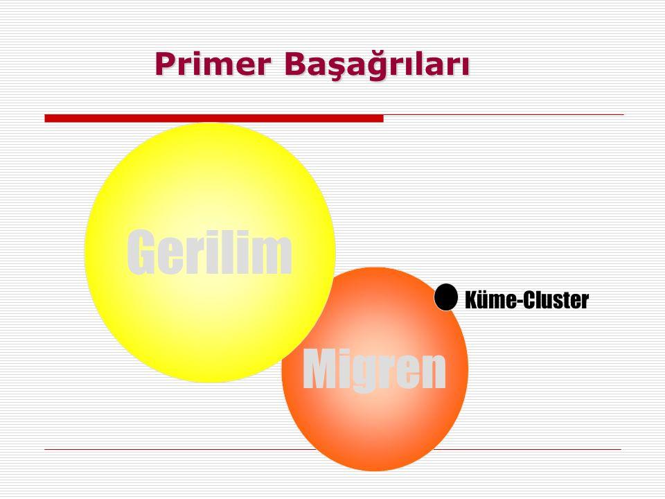 Migren Gerilim Küme-Cluster