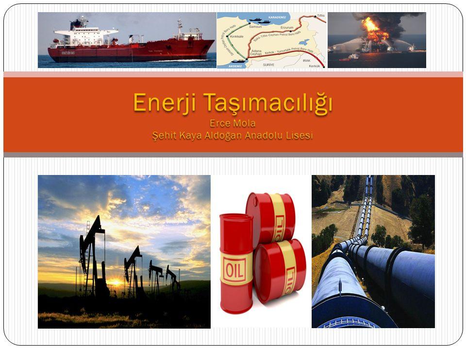 Dünyanın önemli enerji nakil hatlarını bölge ve ülkelere etkileri açısından analiz eder.