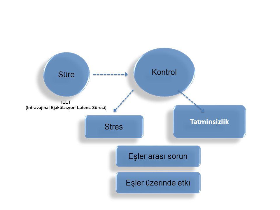 Süre Stres Tatminsizlik Eşler arası sorun Kontrol Eşler üzerinde etki IELT (Intravajinal Ejakülasyon Latens Süresi)