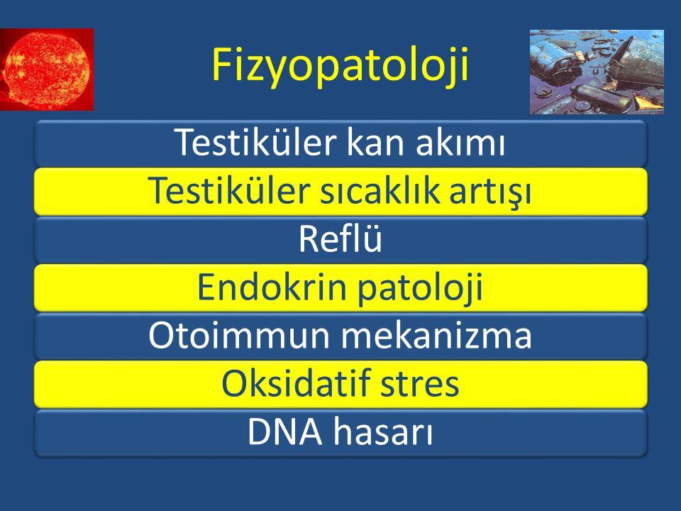 Fizyopatoloji Testiküler kan akımıTestiküler sıcaklık artışıReflüEndokrin patolojiOtoimmun mekanizmaOksidatif stresDNA hasarı