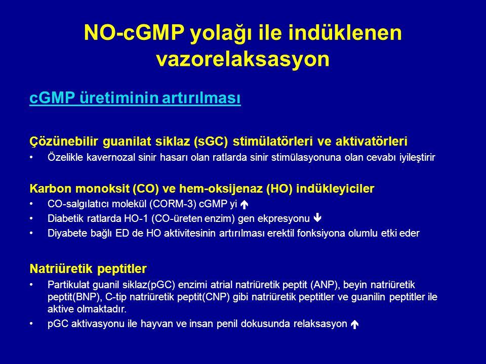 cGMP üretiminin artırılması Çözünebilir guanilat siklaz (sGC) stimülatörleri ve aktivatörleri Özelikle kavernozal sinir hasarı olan ratlarda sinir stimülasyonuna olan cevabı iyileştirir Karbon monoksit (CO) ve hem-oksijenaz (HO) indükleyiciler CO-salgılatıcı molekül (CORM-3) cGMP yi  Diabetik ratlarda HO-1 (CO-üreten enzim) gen ekpresyonu  Diyabete bağlı ED de HO aktivitesinin artırılması erektil fonksiyona olumlu etki eder Natriüretik peptitler Partikulat guanil siklaz(pGC) enzimi atrial natriüretik peptit (ANP), beyin natriüretik peptit(BNP), C-tip natriüretik peptit(CNP) gibi natriüretik peptitler ve guanilin peptitler ile aktive olmaktadır.