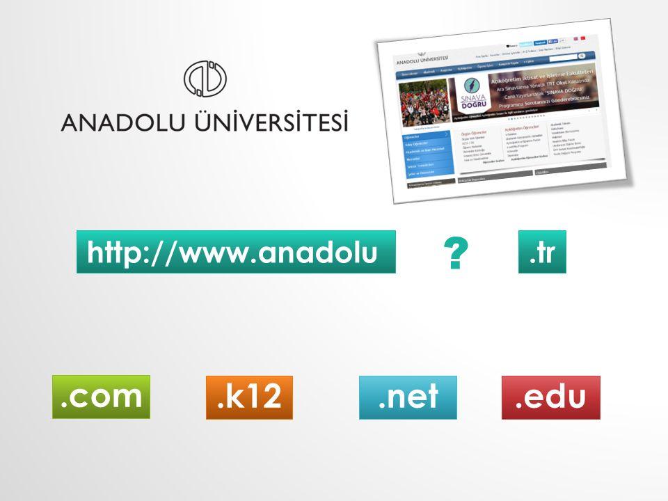 http://www.anadolu.tr.k12.com.net.edu