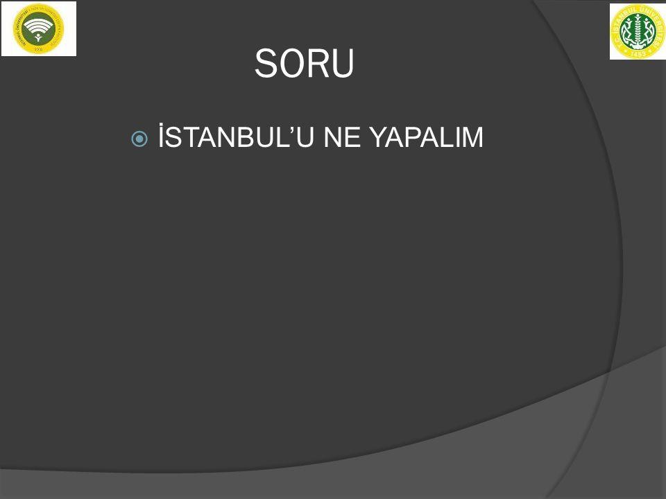 SORU  İSTANBUL'U NE YAPALIM