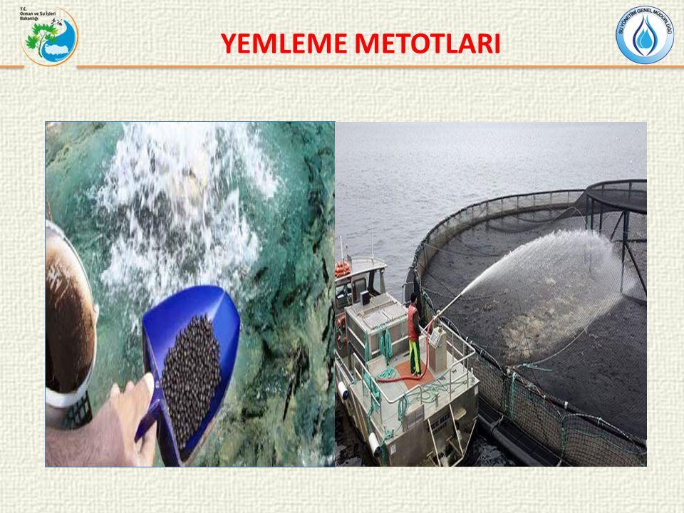 YEMLEME METOTLARI
